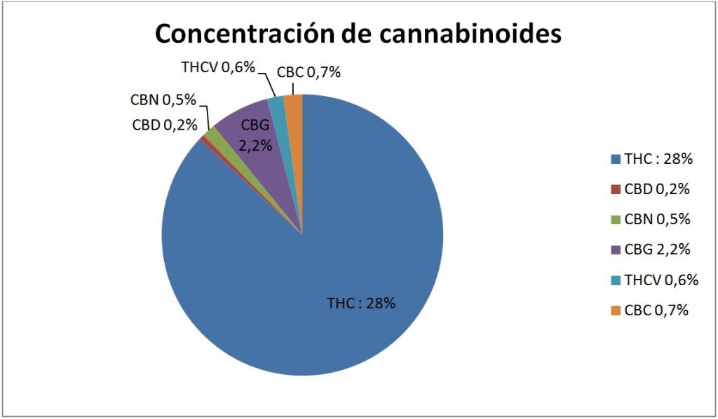 Concentración de cannabinoides de Girl Scout Cookies