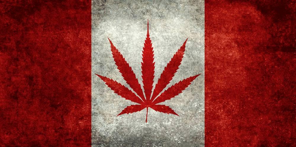 Cannabis y Cannadá