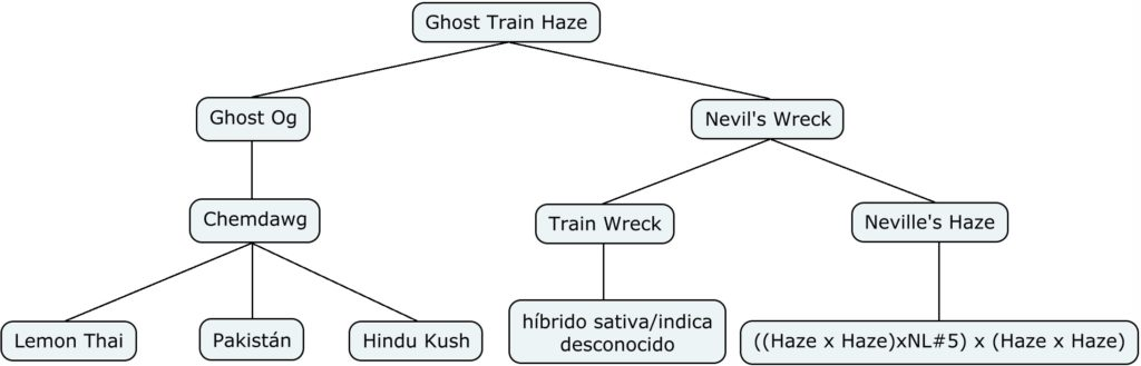 Mapa genético de Ghost Train Haze #1