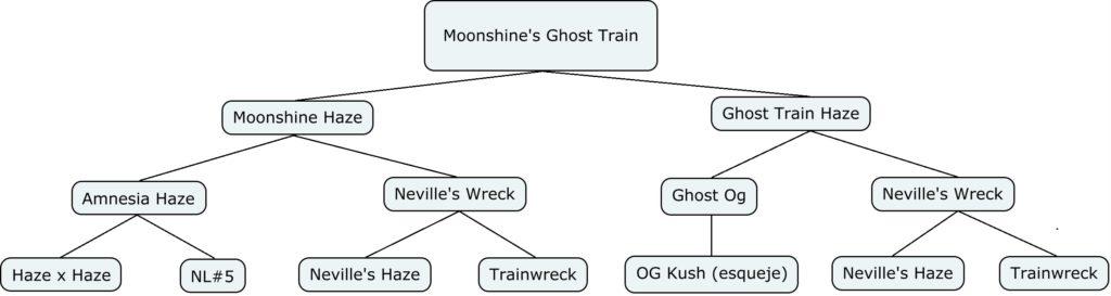 Mapa genético de moonshine's ghost train