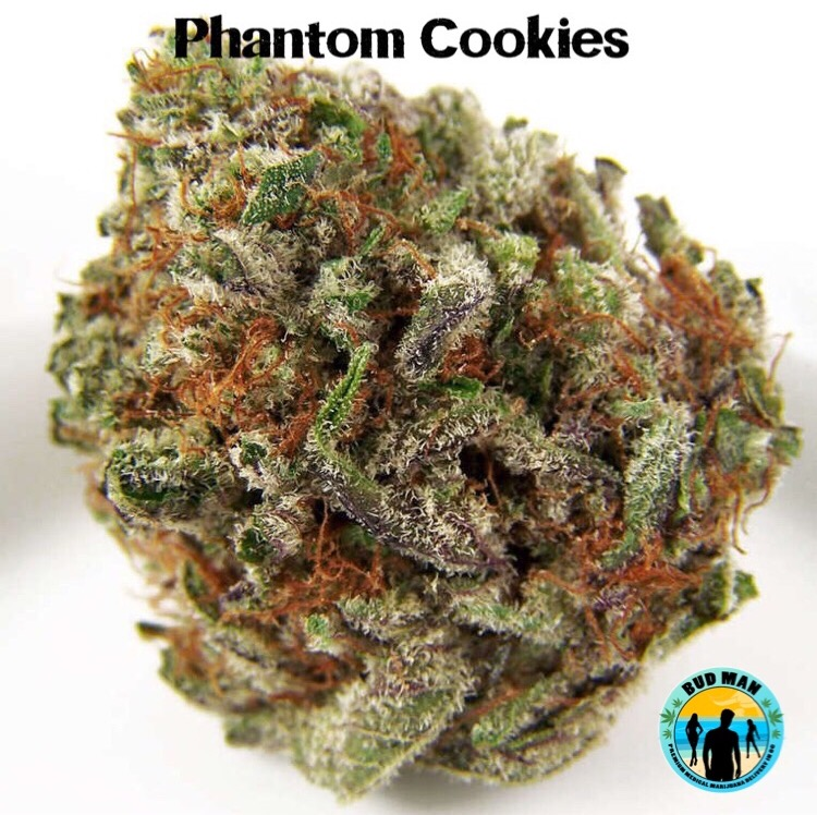 Phantom Cookies cogollo seco