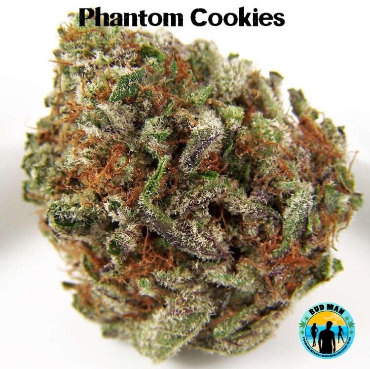 Phantom Cookies cogollo seco