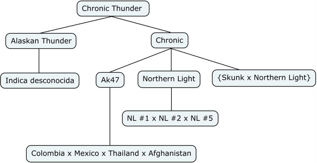 Mapa genético de Chronic Thunder