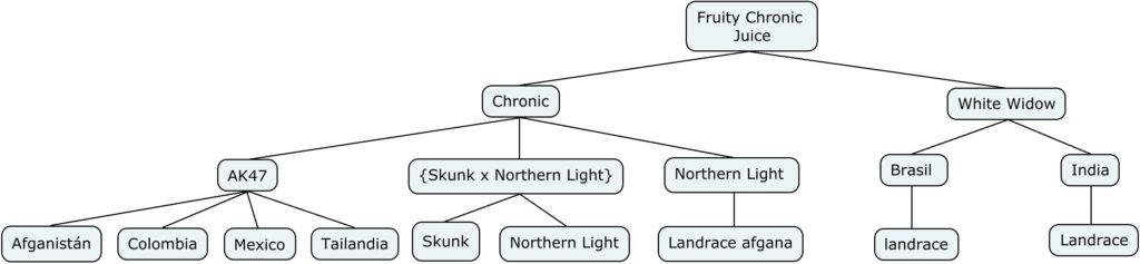 Mapa genético de Fruity Chronic Juice
